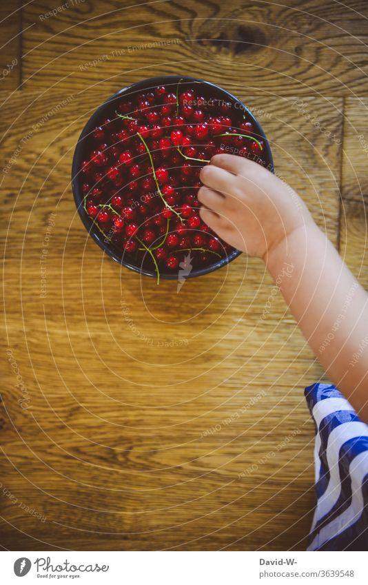 Kind greift mit der Hand nach Frischen Beeren Hände Finger Kleinkind Gesunde Ernährung Vitamine Bioprodukte Essen lecker vitaminreich Joahannesbeeren greifen