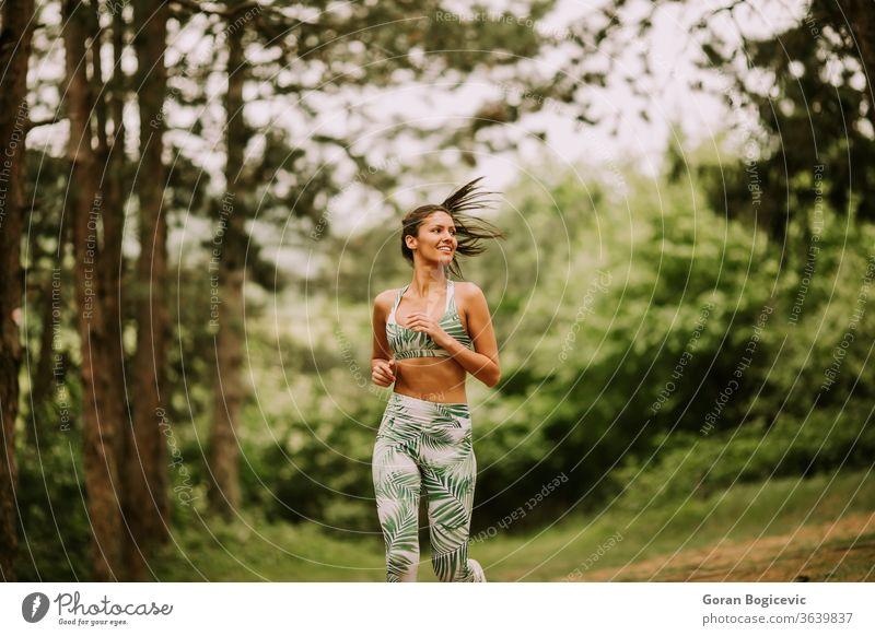 Junge Fitness-Frau läuft auf Waldweg Athlet Park aktiv grün Übung laufen jung im Freien Läufer Joggen Training Jogger passen Baum Lifestyle Sport ländlich