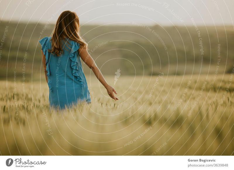 Junge schwangere Frau auf dem Feld Unterleib Erwachsener schön Schönheit Bauch blau brünett Kaukasier Tag Kleid erwartend Weiblichkeit Fruchtbarkeit Gras grün