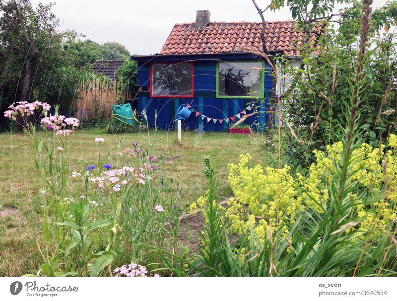 Gartenhaus im Sommer Gartenarbeit Girlande Blumen Wiese Schrebergarten Pflanzen Gießkanne Fenster Gartenlaube Natur Außenaufnahme Farbfoto Freizeit & Hobby
