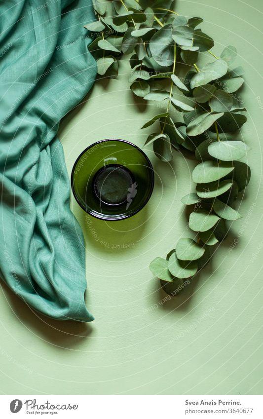 Grün-Grün-Grün grün Farbe Stoff Schüsseln Gardine Pflanze flatlay Design Dekoration & Verzierung