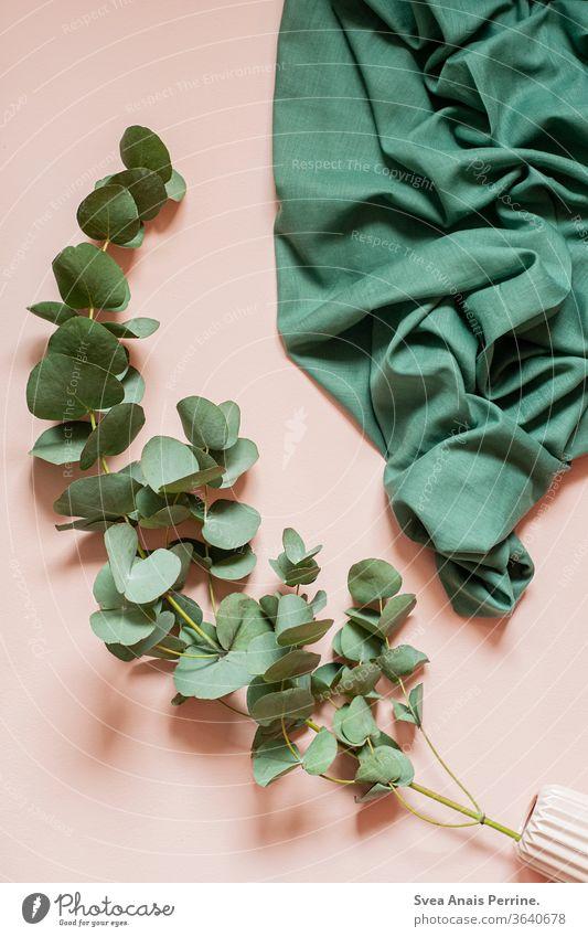 Rosa-Grün! wandfarbe Farbe natürliches Licht rosa Leben wohnen Innenaufnahme Design Stoff Flat lay Collage Schüsseln Kunst Efeu grün Pflanze Tageslicht
