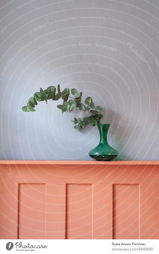 Kalt-Warm blau rot wohnen wandfarbe grün Pflanze Eukalyptus Vase Innenaufnahme Dekoration & Verzierung