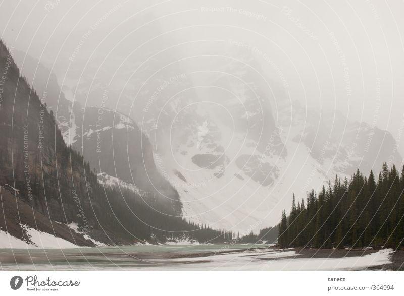 Grauer Sommertag Landschaft Berge u. Gebirge Rocky Mountains See Moraine Lake außergewöhnlich Ferne kalt grau Dunst Gletscher Nebel Natur Gebirgssee entdecken