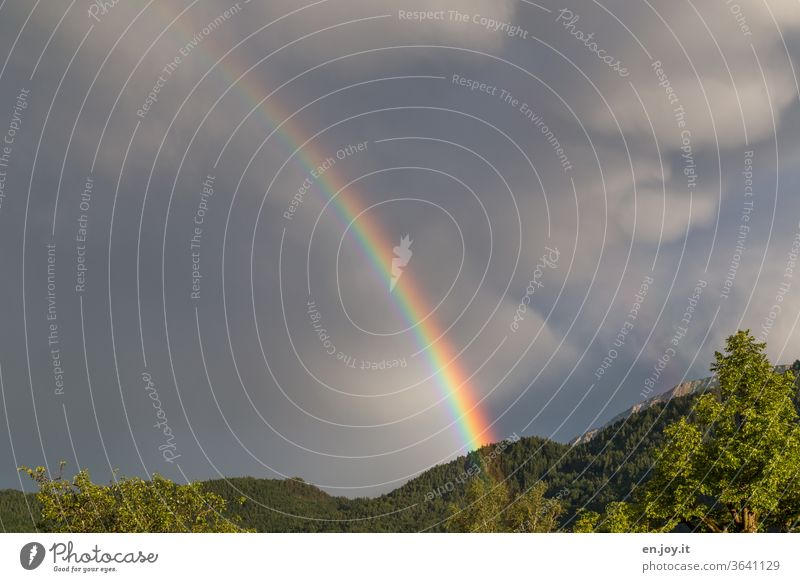 Regenbogen am dunklen Himmel Bunt schlechtes Wetter Regenwetter Farbe Klima Wolken Gewitterwolken Natur Umwelt Sturm Klimawandel Urelemente Unwetter