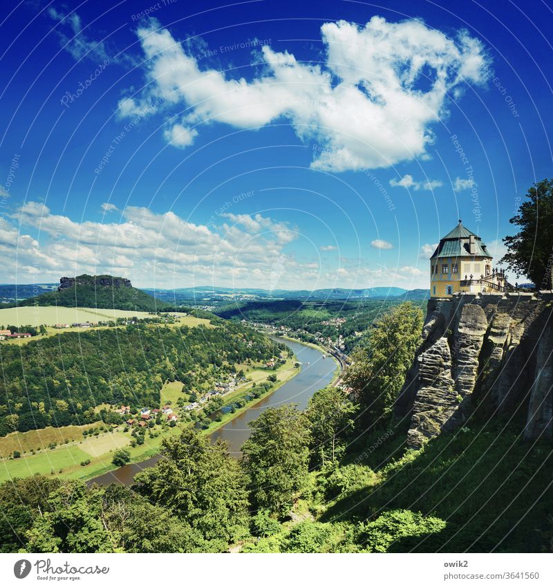 Blickwinkel Panorama (Aussicht) Totale Sonnenlicht Idylle Farbfoto Außenaufnahme Sachsen Deutschland Elbe Lilienstein Elbsandsteingebirge Flussufer Baum Pflanze