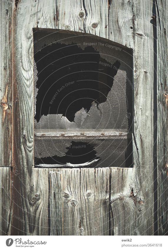 Schachmatt Fenster Gitter alt bizarr dunkel Detailaufnahme zerbrochen Reste Verfall Vergänglichkeit Fassade Zerstörung Außenaufnahme schadhaft kaputt