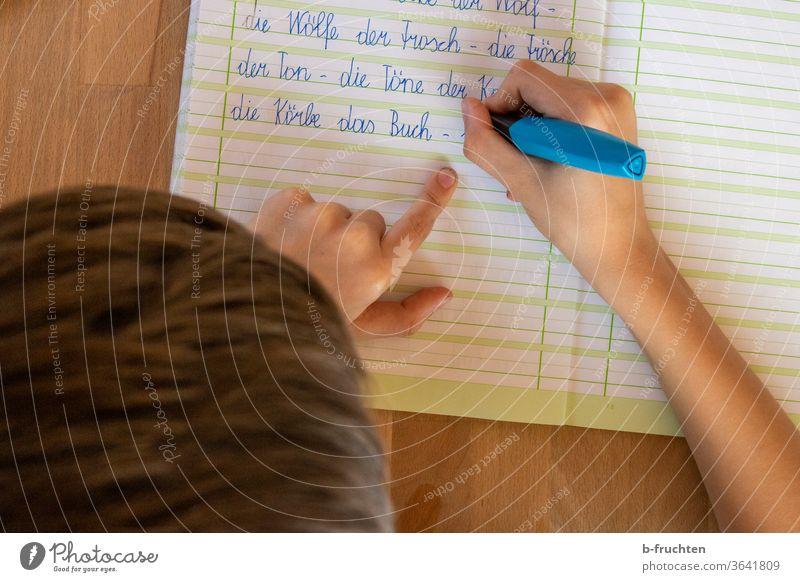 Kind schreibt im Deutschheft. Hausübungen, Schulübungen Heft schreiben Feder Füllfeder Bildung Schreibstift Hausaufgabe Kindheit Papier Schüler Schulkind