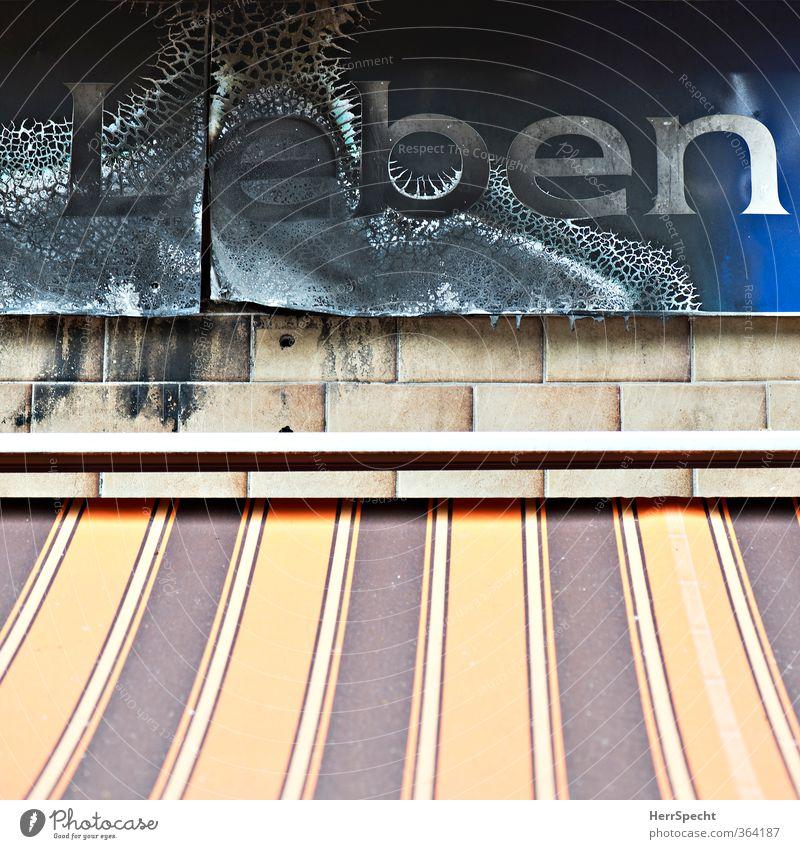 Leben, abgebrannt Stadt Wand Berlin Gebäude Mauer Lebensmittel Fassade trist Schilder & Markierungen Schriftzeichen Vergänglichkeit kaputt Brand trashig