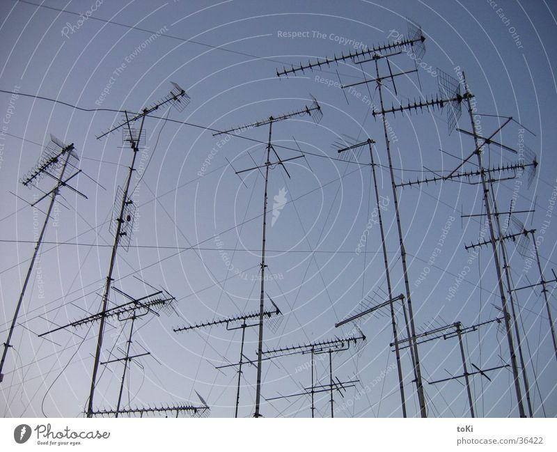 funk Antenne Nachmittag Italien Sonnenuntergang Fernseher Elektrisches Gerät Technik & Technologie Kommunizieren blau Himmel Netz Provinz Brindisi süditalien