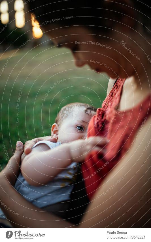 Mutter im Freien stillen Mutterschaft Baby Krankenpflege Zusammensein Zusammengehörigkeitsgefühl Eltern Kaukasier Kindheit Glück Halt Familie & Verwandtschaft