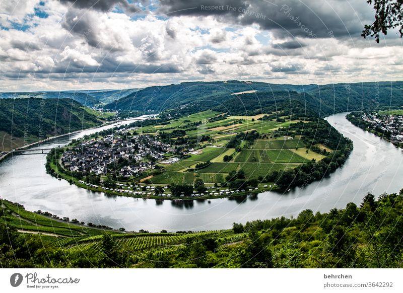schleifchen Wald Ferien & Urlaub & Reisen wandern Natur Landschaft Himmel Wolken Sommer Umwelt Außenaufnahme Menschenleer Farbfoto Berge u. Gebirge Tourismus