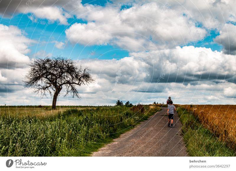 *1700*...weil so oft der weg das ziel ist Getreidefeld Wanderer Straße Wege & Pfade Zusammensein Ackerbau Außenaufnahme Umwelt Berge u. Gebirge gemeinsam Ähren