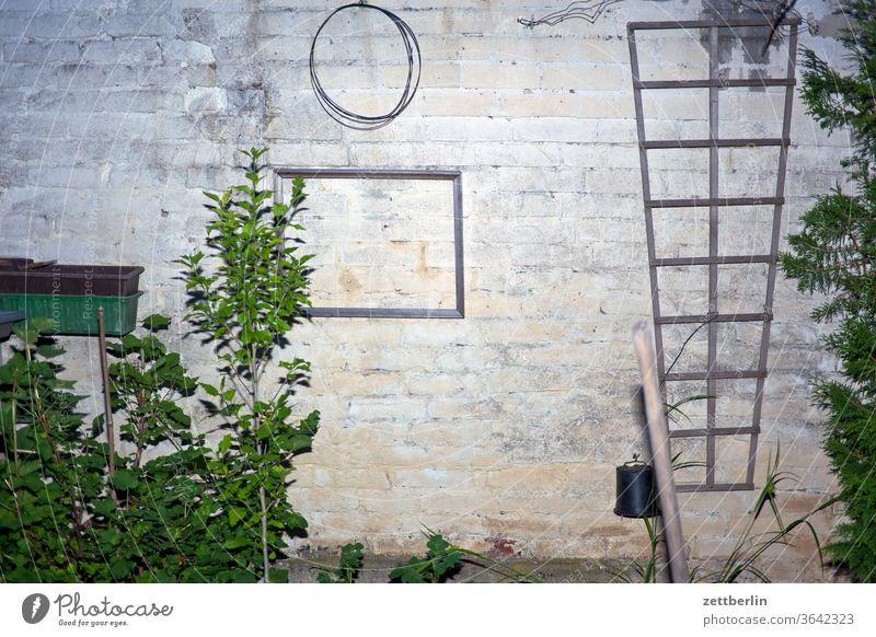 Angeblitzte Wand abend ast baum blitzlicht blume blühen blüte dunkel erholung ferien garten gras kleingarten kleingartenkolonie menschenleer nacht natur pflanze