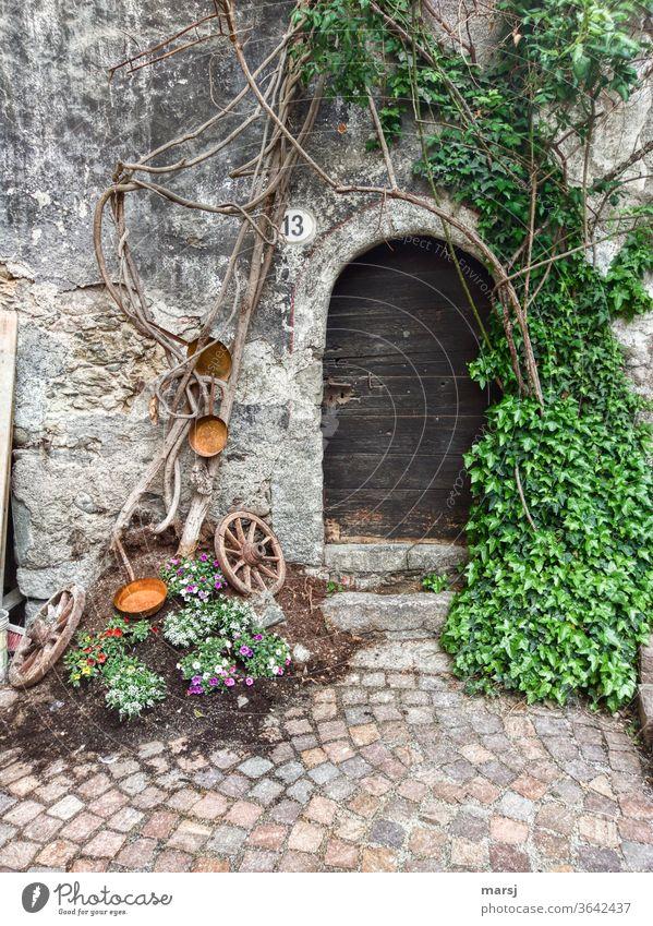 Mit Liebe gestalteter Eingangsbereich zum Haus Nummer 13 Hauseingang Türe Holztüre historisch gepflegt mit Liebe gestaltet Fassade Wand Gebäude Bauwerk Mauer
