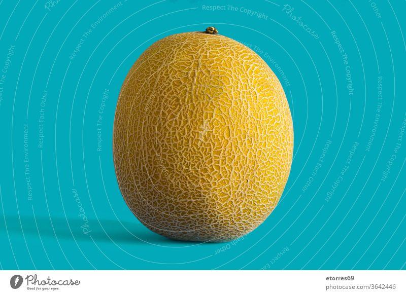 Cantaloupe gelbe Melonenfrucht auf blauem Hintergrund Kantalupe Nahaufnahme lecker Diät frisch Frucht saftig Ernährung organisch roh Sommer süß Textur tropisch