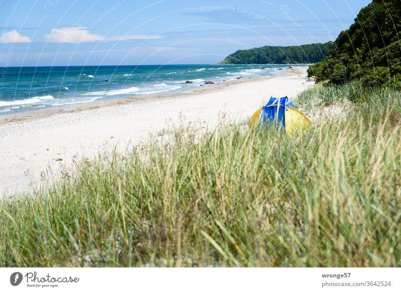 Ab ins Wochenende | Dünen, Strand, blauer Himmel und Meer Ostseestrand Schönes Wetter Sandstrand Dünengras Strandmuschel menschenleer Außenaufnahme Farbfoto Tag