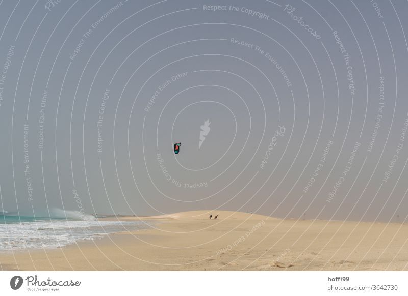 nach dem Sport - Kitesurfer gehen nach Hause Dühne Wüste Wellen Wellengang Atlantic Ocean Ozean weite Wasser Küste Meer minimalistisch Minimalismus Dunst