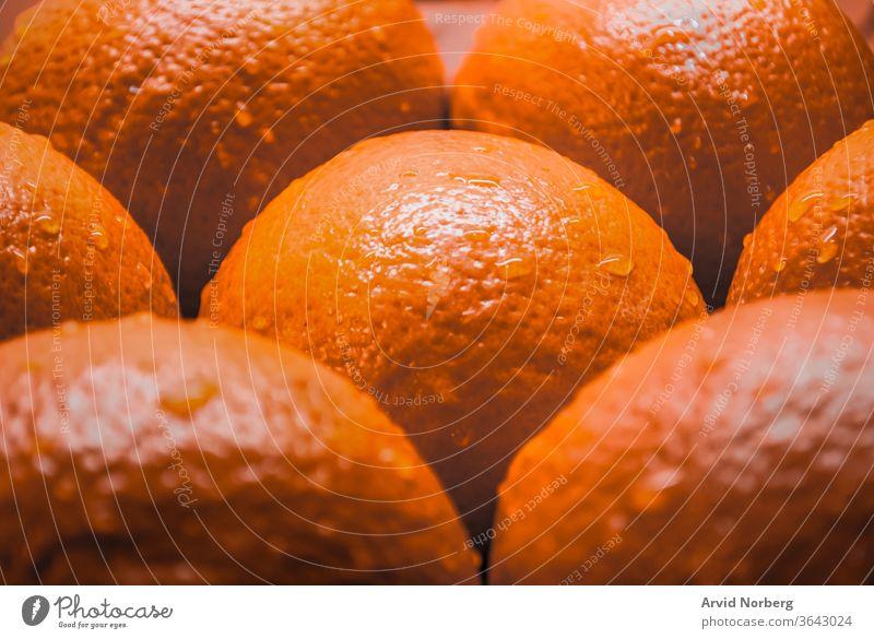 Nahaufnahme von mehreren Orangen mit Wassertröpfchen Hintergrund hell Zitrusfrüchte Farbe Tropfen Lebensmittel frisch Frische Frucht Früchte grün Gesundheit