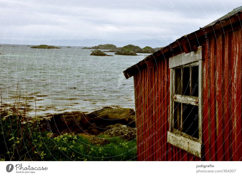Norwegen Natur alt Wasser Landschaft Haus Umwelt Fenster Küste Gebäude klein Felsen natürlich Stimmung Fassade wild Klima