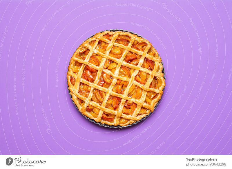 Aprikosentorte im Blech frisch gebacken. Draufsicht auf Torte mit Gitterkruste obere Ansicht Amerikaner Aprikosenkuchen Herbst Bäckerei Frühstück Kuchen
