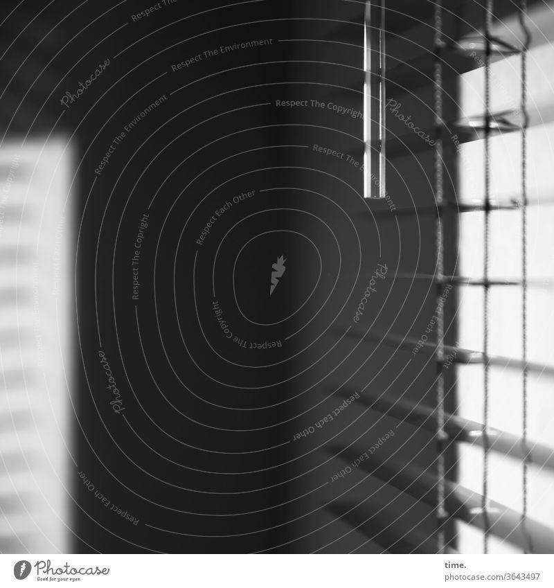Abendlicht wand jalousie sonnig grenze schutz sicherheit durchlässig parallel grau mauer schlitz schatten metall kunststoff hängen blendschutz inspiration