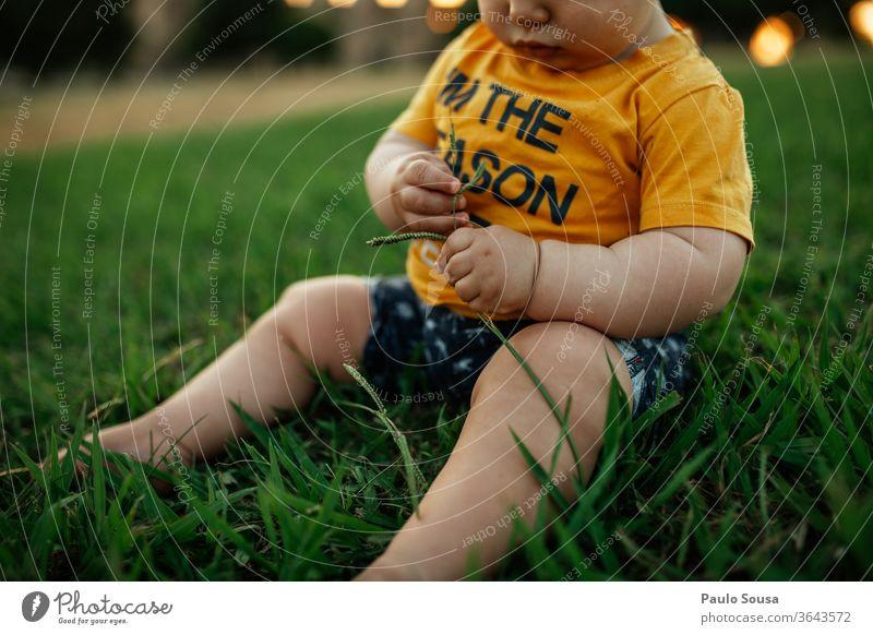 Mit Gras spielendes Kleinkind Kaukasier 0-12 Monate Kind Kinderspiel Kindheit Spielen Sommer Sommerurlaub im Freien Baby Farbfoto Mensch Freude Außenaufnahme