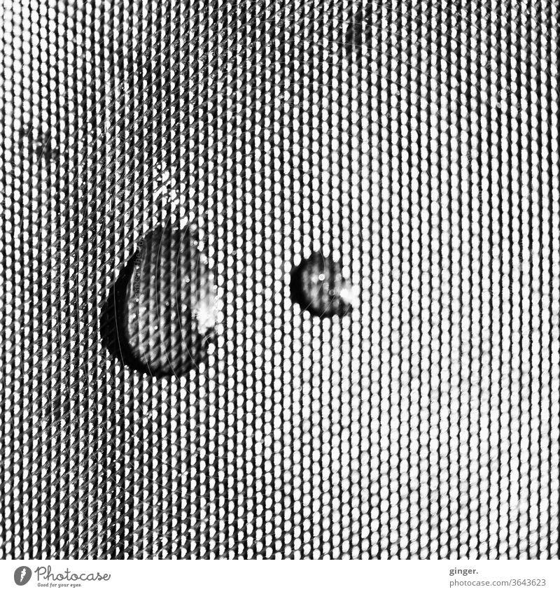 Tropfen auf Folie s/w - Just a little bit sad Schwarzweißfoto Dinge Strukturen & Formen Wasser Regen Makroaufnahme Außenaufnahme Reflexion & Spiegelung