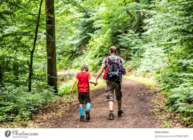 gemeinsam sein Wanderer Wege & Pfade Zusammensein Umwelt Außenaufnahme Natur Sommer Sohn Vater wandern Mann Kind Junge Eltern Familie & Verwandtschaft Liebe
