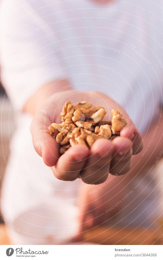 Hand voller Nüsse Nut satt Walnussholz Haselnuss Gesundheit Mandel Person Makro Vegetarier Bestandteil Handvoll weiß Handfläche getrocknet Beteiligung essen