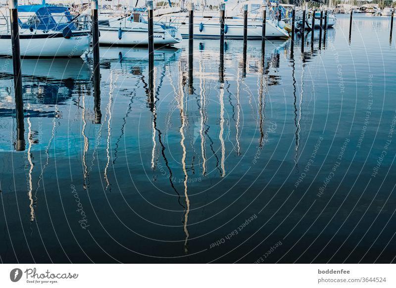 abends an der Marina - vertäute Segelboote, deren Boote und Masten sich im glatten Wasser spiegeln. Die Masten werden von der Abendsonne angestrahlt und verlieren sich im dunkel beschatteten Wasser.