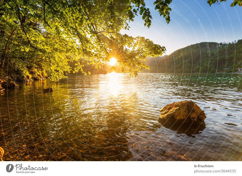 Abendstimmung am See, Wolfgangsee, Salzkammergut, Österreich Sonnenuntergang Himmel Baum Abenddämmerung Natur Sonnenlicht Stein Gebirgssee Wasser Seeufer Ufer