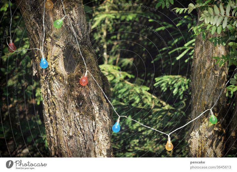 feierlaune Wald Lichterkette feiern Bäume Fest Natur lachen bunte Lichter Ruhestand