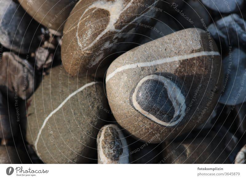 Flusssteine mit weißen Linien Flusstein Flußsteine Kieselstein Kieselsteine grau Stein Nahaufnahme Strukturen & Formen Steine Muster Kringel Kreise