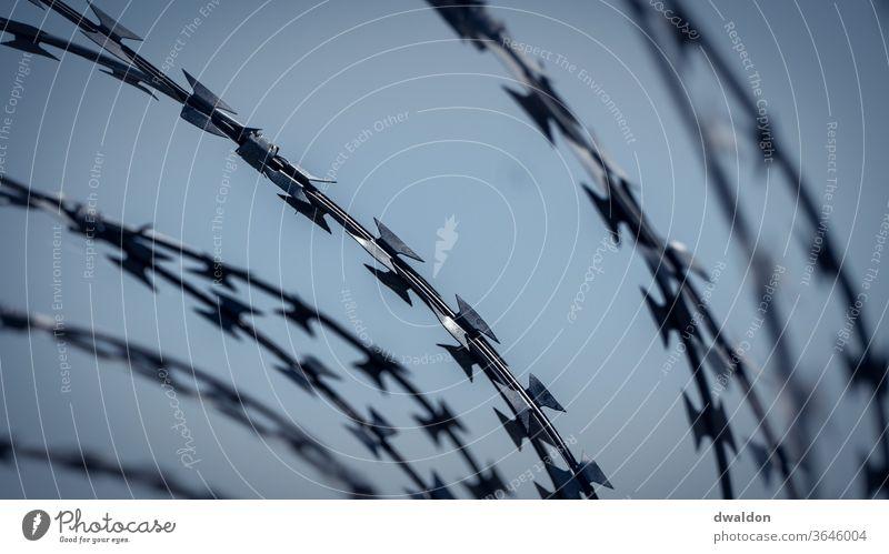 Stacheldraht Zaun Stacheldrahtzaun Borte gefangen Barriere Sicherheit Maschendrahtzaun Draht Metall gefährlich Außenaufnahme Schutz Freiheit