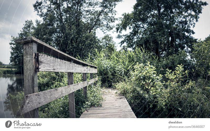 Einsame Holzbrücke Brücke Außenaufnahme Farbfoto Menschenleer Tag Natur Wasser Pfosten Schatten Landschaft Umwelt Wege & Pfade See Ferien & Urlaub & Reisen Steg