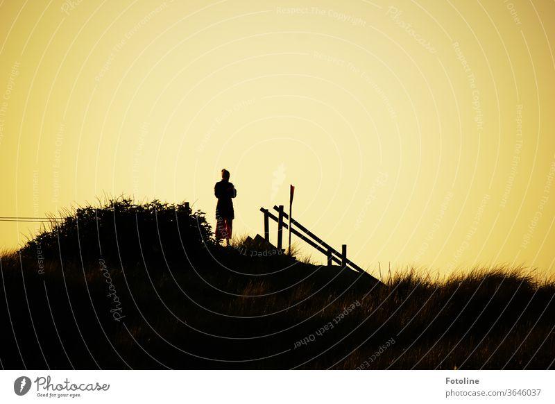 Beim Sonnenuntergang schnell mal was auf Instagram posten - oder eine junge Frau steht im Sonnenuntergang auf der Düne und checkt ihr Handy Helgoland Geländer