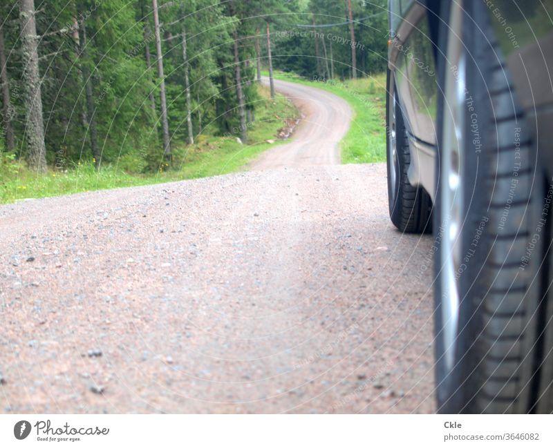Durch Värmlands Wälder Wald Waldpiste Auto Pkw Autoreifen Bergab unwegsam Bäume Wildnis Einsamkeit Außenaufnahme Verkehr Fahrzeug Straße Verkehrsmittel