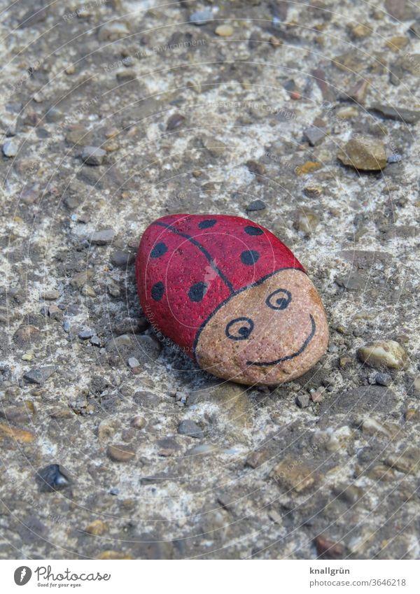 Marienkäfer Glücksstein auf einer Mauer Glückssteine Käfer DIY Tier Insekt Makroaufnahme Nahaufnahme rot Punkt Außenaufnahme Glücksbringer klein schwarz 1 Tag