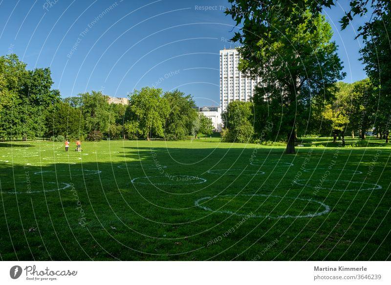 Kreidekreise auf dem Rasen in einem Park zur Einhaltung des Mindestabstands. Soziale Distanzierung. Corona, Covid19 in Rotterdam. Abstand halten Aktivität Baum