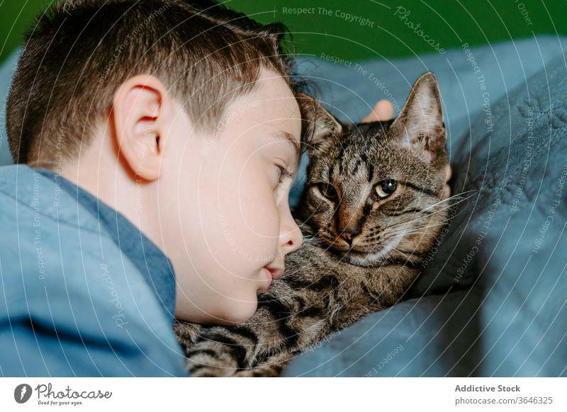 Kleiner Junge und Katze nehmen sich mit dem Handy auf dem Bett selbst auf niedlich lässig Zusammensein Umarmung Komfort süß sich[Akk] entspannen bezaubernd grau