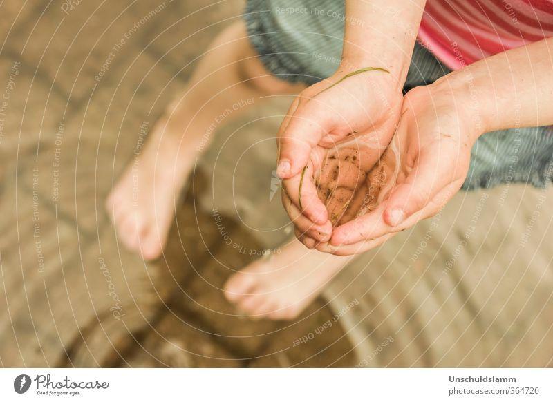 ...was vom Gewitter übrig blieb! Mensch Natur Wasser Sommer Hand Freude Umwelt Leben Gefühle Spielen Schwimmen & Baden natürlich Fuß Stimmung Regen