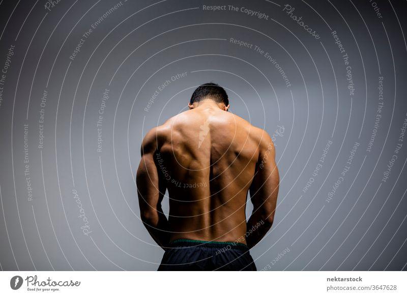 Männliches Fitness-Modell Rückenmuskeln Nam Vo männlich asiatisch muskulös Muskeln Stärke Sport sportlich Studioaufnahme menschlicher Körper Physis Torso Mann