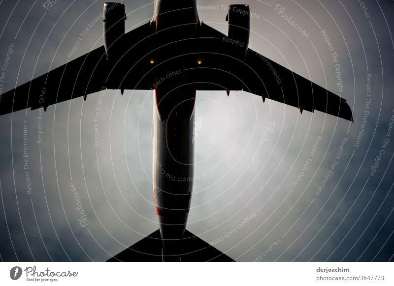 Unter dem anfliegenden Flugzeug  . Die Tragflächen sind zum greifen nah .Ganz nahe...mit Blick nach oben. Himmel Luftverkehr Ferien & Urlaub & Reisen