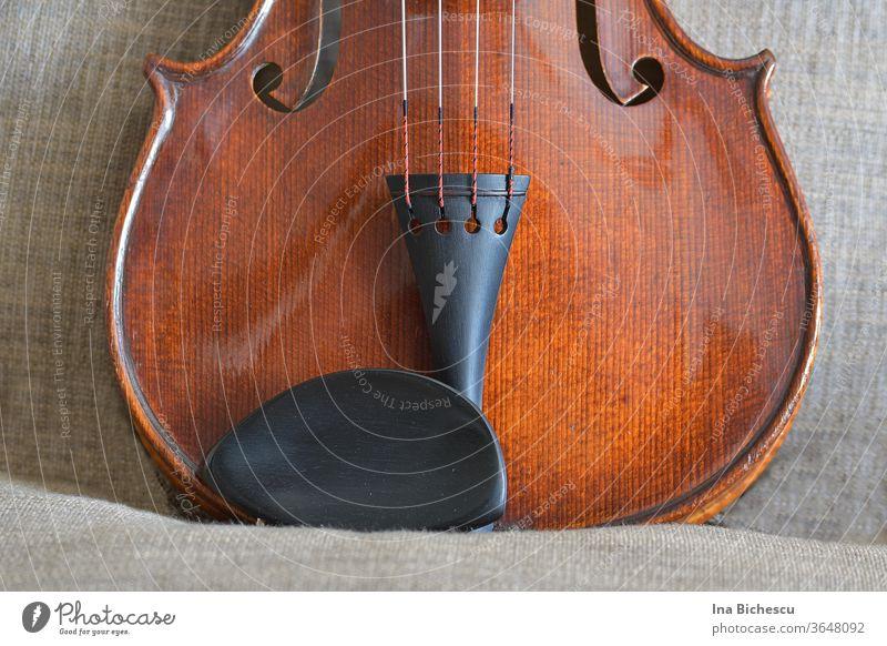 Der untere Teil eines Geigenkorpus . Man sieht den Kinnhalter und die Seitenstütze, Teile von den Seiten und von den f-Löchern. Das Ganze sieht aus wie ein Katzenkopf.