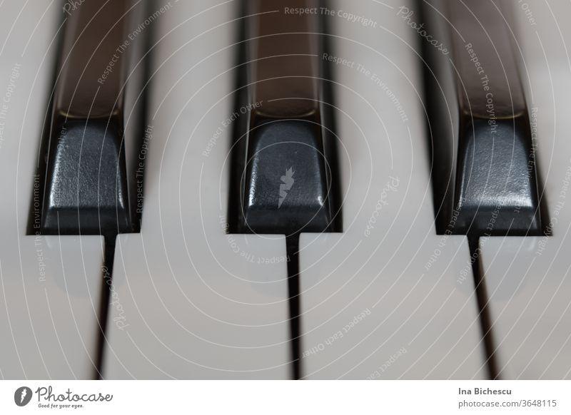 Drei schwarze Tasten und vier weiße Klaviertasten von der Perspektive der Spieler, sehr nah fotografiert. klavier weiss Klaviatur Innenaufnahme Musikinstrument