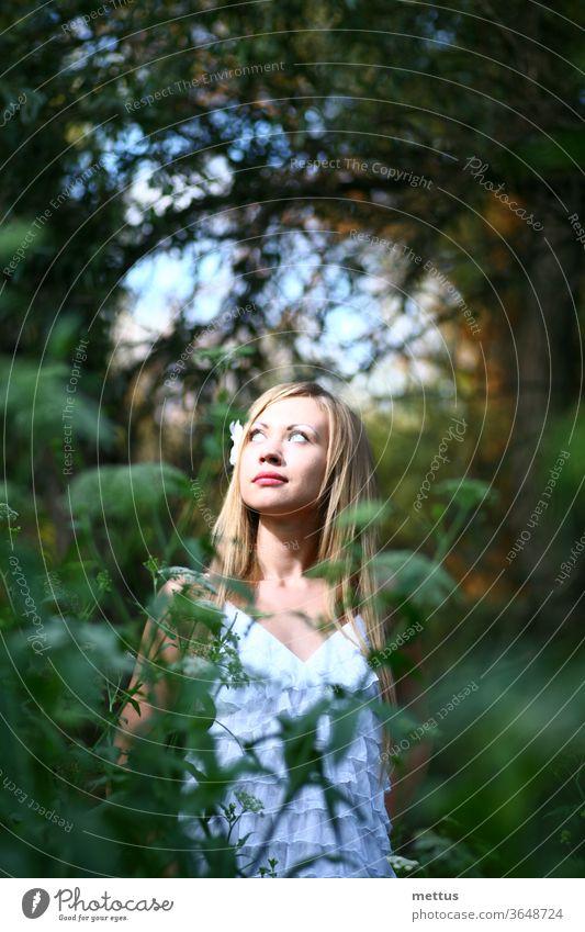Ruhiges Mädchen posiert im hohen Gras in weißem Kleid und schaut zum Licht mit Bäumen im Hintergrund Erwachsener Herbst schön Schönheit Schönheit in der Natur