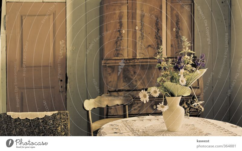 Der Blumenstrauß in der Vergangenheit alt weiß Pflanze Blume grau braun Tür ästhetisch Stuhl historisch Blumenstrauß Grünpflanze Schrank