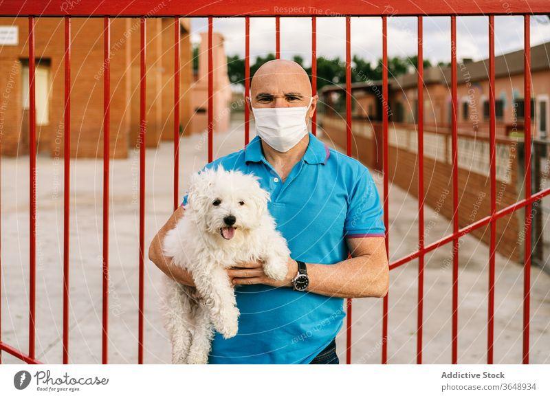 Mann mit Atemschutzgerät mit Bichon Frise steht gegen Metallpalisade Bichon frise Hund niedlich Palisade lässig ernst Haustier Coronavirus weiß Bund 19 Seuche