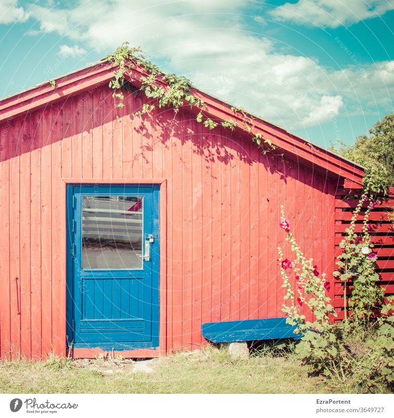 rote Hütte, blaue Tür Haus Holz Sommer Bank Himmel Wolken Stockrose sonnig